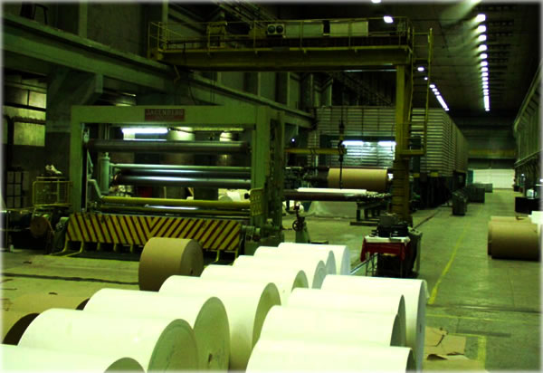 Paper Manufacturing Machine